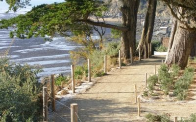 Ouvertures des plages