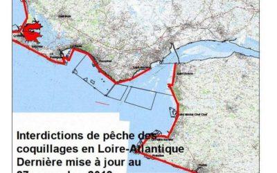 Réouverture de la pêche à pied sur le littoral